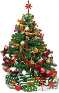beautiful_christmas_tree_2_hd_pictures_170700